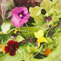 *NEW* SUPER SALAD MIX - 200g  *With micro greens and edible flowers*