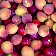**STONEFRUIT** 500g *Nectarines* (Peters Farm- Certified Organic)