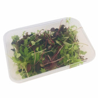 MICRO GREENS Mixed (*CF *AP)