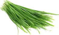 CHIVES Garlic (Veggie Patch) *CF