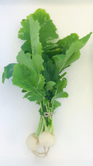TURNIPS Hakurei- Bundle of 3 (Veggie Patch) *CF