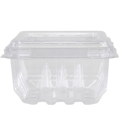 Compostable Berry / Fruit Container