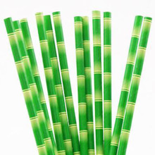 Paper Straws - Bamboo