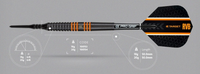 Target - Raymond Van Barneveld - RVB80 Black - Soft Tip Dart - 20g