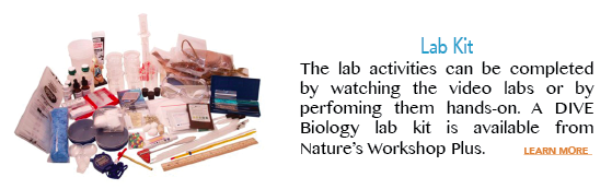 lab-kit-image-and-text-for-elearning-biology-webpage.png