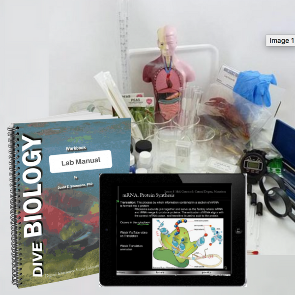 Everything you need for a successful year of Biology! A printable PDF of the lab workbook is included in the eLearning course. A hard copy in full color and spiral bound with free 2-3 day shipping is also available.