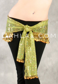 EGYPTIAN SEQUIN HIP SCARF WITH COINS AND PAILLETTES for Belly Dance