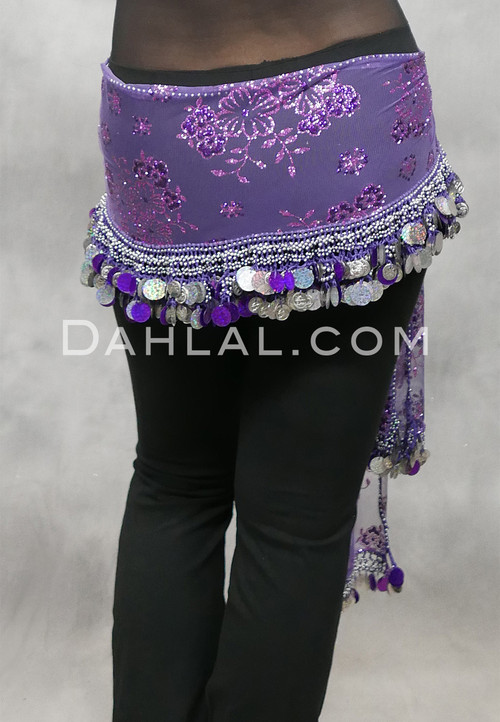 Egyptian Embroidered Sheer Hip Scarf with Coins