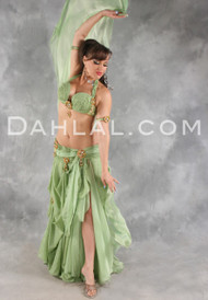 ALL THAT GLITTERS in Sage and Gold by Designer Eman Zaki, Egyptian Belly Dance Costume Available For Custom Order