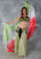 Belly dance iridescent Halter Bra and Hip Belt Set