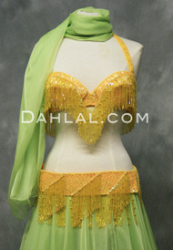 BEYOND THE BASICS in Yellow Iris in a Bra Size B #2 by Rising Stars, Egyptian Belly Dance Costume