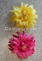 yellow and pink hair flower