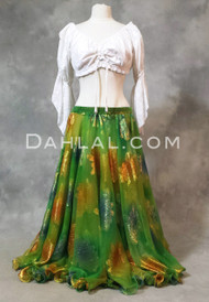 Egyptian belly dance chiffon skirt