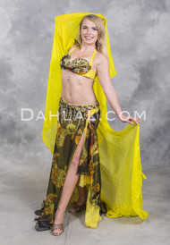 belly dance cabaret costume
