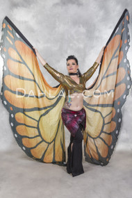butterfly wings of isis