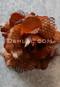 copper hair flower