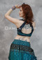 Back View of Choli Top