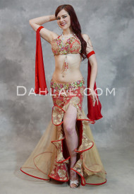 red and gold belly dance costume