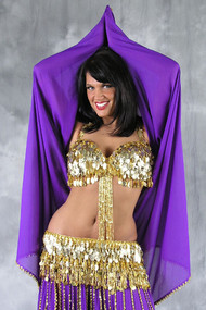 Gold Coin Egyptian Belly Dance Bra and Belt Set