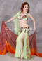 lime and brown Egyptian belly dance costume