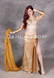 Golden Tigress Egyptian Belly Dance Costume