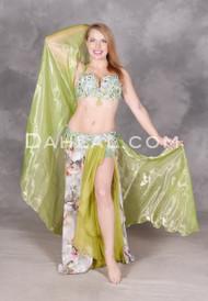 Garden Paradise bellydance costume