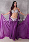 Heart's Entwined Violet Egyptian Costume