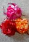 fuchsia, red and orange hair flowers