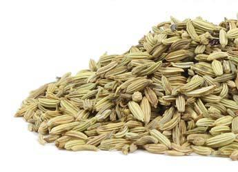 fennel-seed-herbosophy-ra.jpg