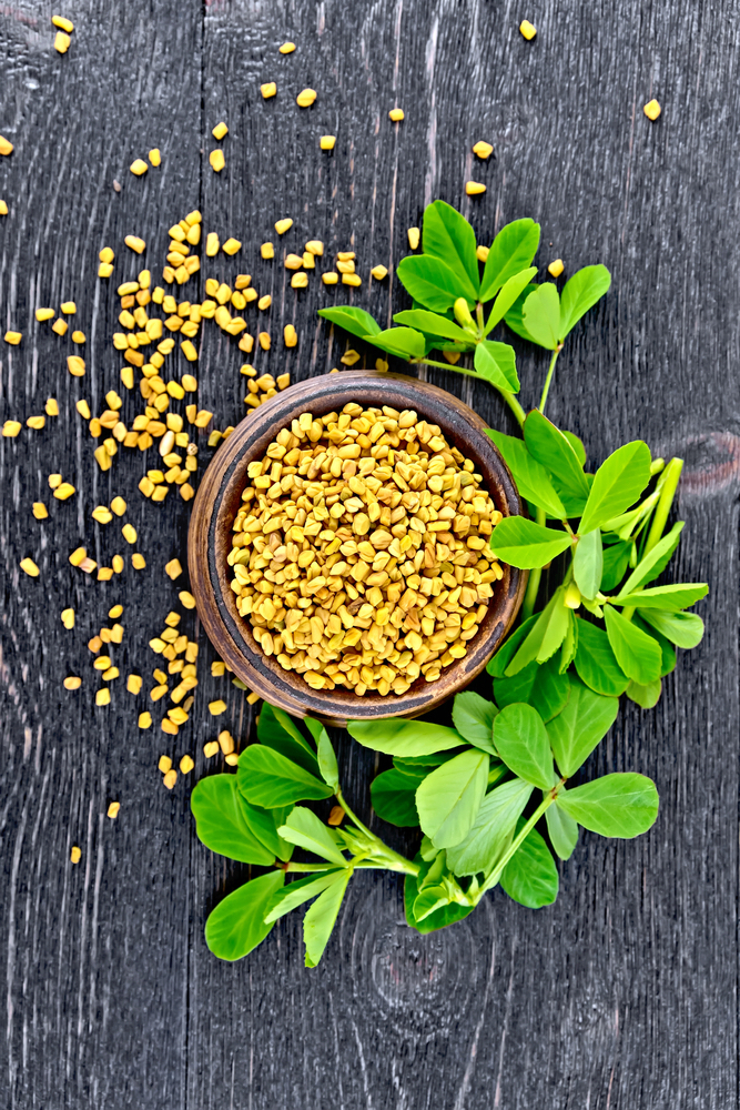 Fenugreek Seed and Leaves