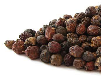 hawthorn-berry-herbosophy-ra.jpg