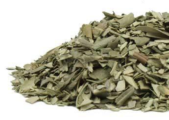 olive-leaf-herbosophy-ra.jpg