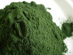 spirulina-powder-herbosophy-top.jpg