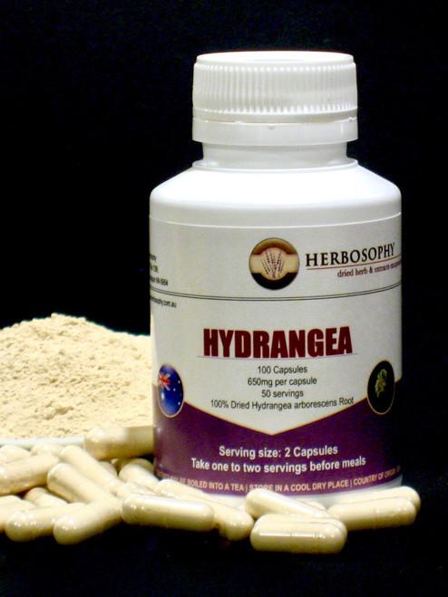 Hydrangea Root Capsules & Loose Powder @ Herbosophy