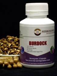 Burdock root Loose Herb, Powder or Capsules @ Herbosophy