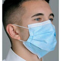 Bag of 10 Pleated Procedural Face Mask with Earloops 3 Ply