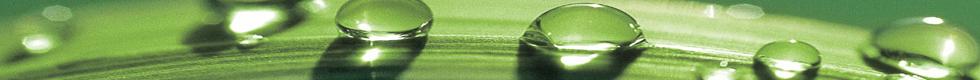 waterdroponleaf.jpg