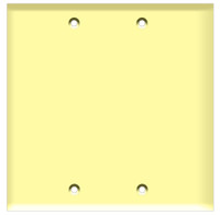 Blank Wall Plate 2-Gang Ivory