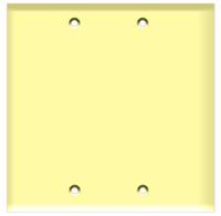 Blank Wall Plate 2-Gang Ivory