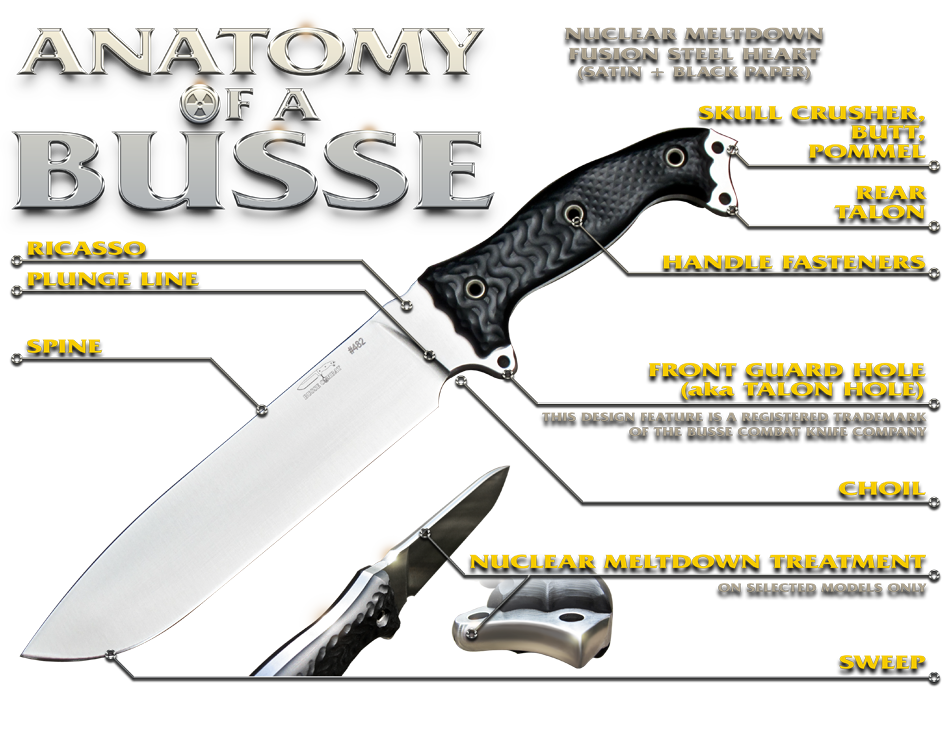 anatomy-of-a-busse-yellowtext.png