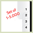 1-5,000 Index tabs