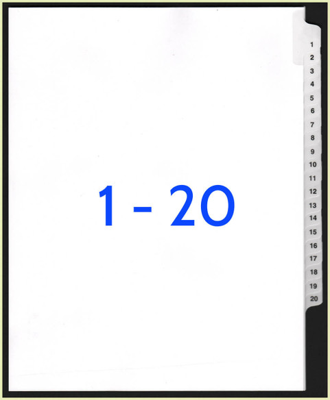 1-20 Dividers