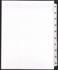 21-30 Side Tab Dividers
