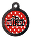 I'm chipped red polka dot dog ID Tag