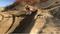 JBI Suspension WP AER48 Pro Fork in action at Glen Helen.  2017 KTM 450SXF