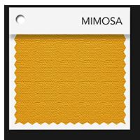 Mimosa tablevogues