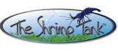 the-shrimp-tank-logo.png