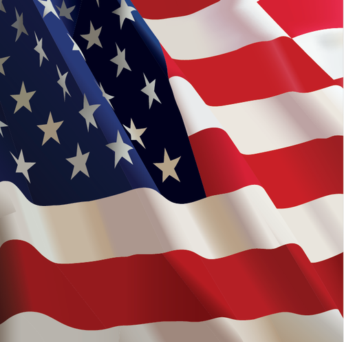 buy vector american usa flag waving icon logo graphic royalty free
