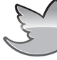 twitter-logo-icon-buy-vector-twitter