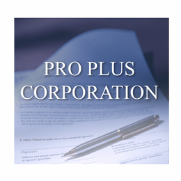 The Professional Plus Corporation Package is for Attorneys, CPAs, and Financial Advisors who need only the bare minimum of service and want to handle many of the details themselves.